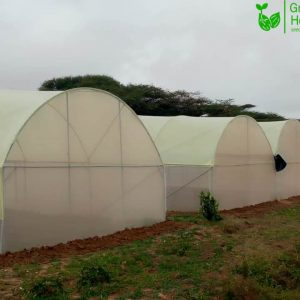 Durable Metallic Greenhouse